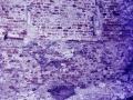 piershil-kerk-renovatie-leegmaken-024