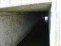 piershil-eendrachtspolder-23maart2006-06