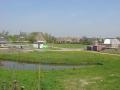 piershil-kievitstraat-3mei2006-04