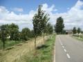 piershil-molendijk-27juli2007-03