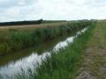 polder-klein-piershil-14aug2009-09