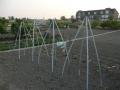 piershil-foto-eilandje-24april2011-16