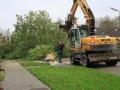 piershil-mauritsstraat-bomen-26nov2017-06