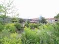 piershil-heemzicht-verbouwing-13aug2013-015