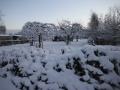 piershil-winter-10feb2013-05