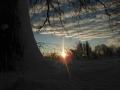 piershil-winter-10feb2013-13