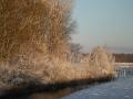 piershil-winter-10feb2013-16