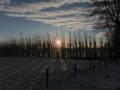 piershil-winter-10feb2013-17