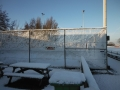 piershil-winter-10feb2013-30