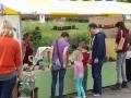 cultuur-kunst-markt-piershil-28juni2014-017