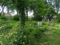 zuid-beijerland-oudebegraafplaats-26mei2016-13