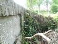 zuid-beijerland-oudebegraafplaats-26mei2016-25