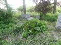 zuid-beijerland-oudebegraafplaats-26mei2016-39