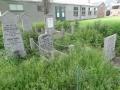 zuid-beijerland-oudebegraafplaats-26mei2016-41