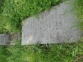 zuid-beijerland-oudebegraafplaats-26mei2016-45