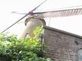 puttershoek-molen-delelie-8okt2016-14