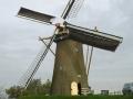 1845_DD van Dijk_Simonia_Piershil