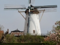 1856_DD van Dijk_Korenlust_Stellendam