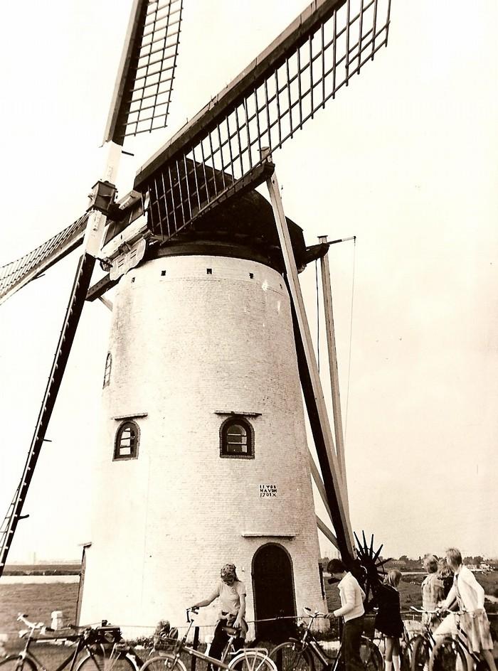 nieuw-beijerland-molen-01