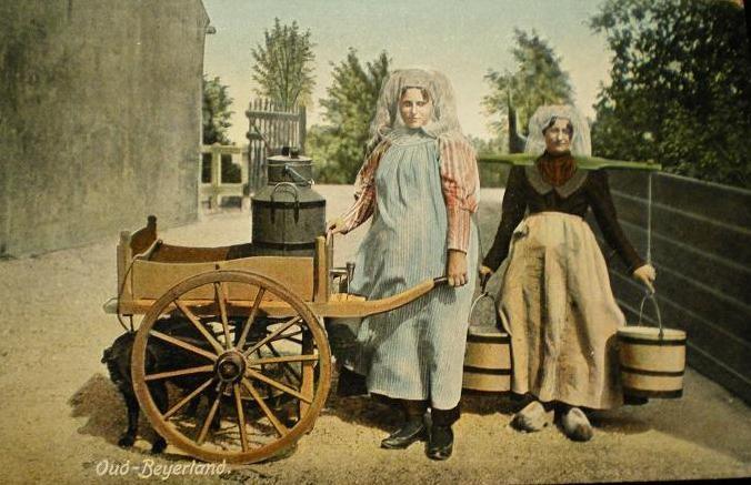 oud-beijerland-wagen-01