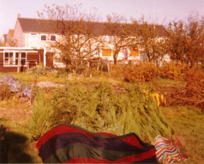 piershil-beatrixstraat32-achtertuin-16