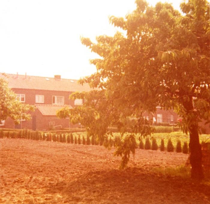 piershil-beatrixstraat32-achtertuin-17