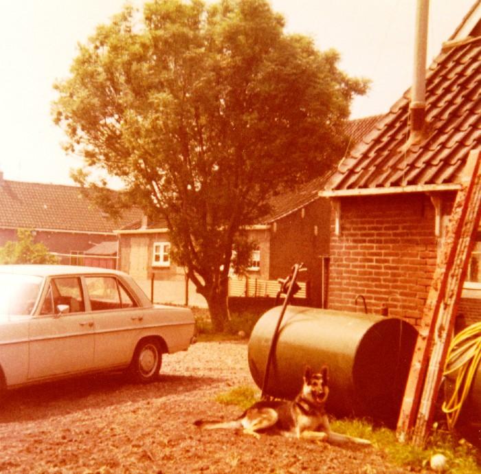 piershil-beatrixstraat32-achtertuin-19