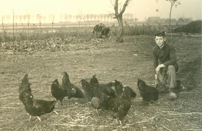 piershil-boerderij-adklaas-ad