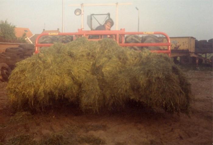 piershil-boerderij-klaasenad-08