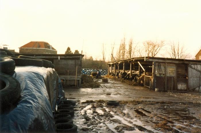 piershil-boerderij-vanbergeijk-voordesloop-07