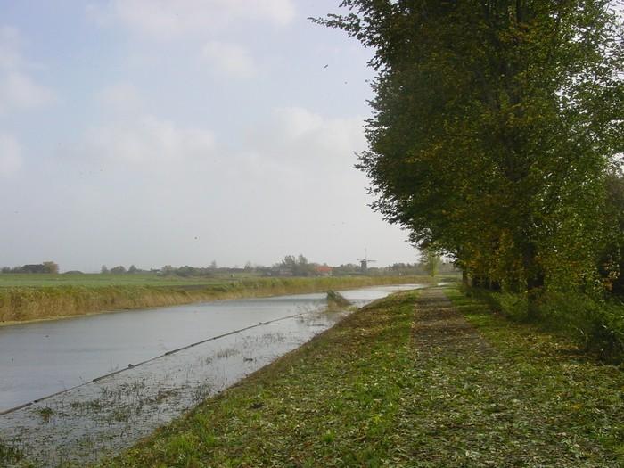 piershil-bos-27okt2007-11