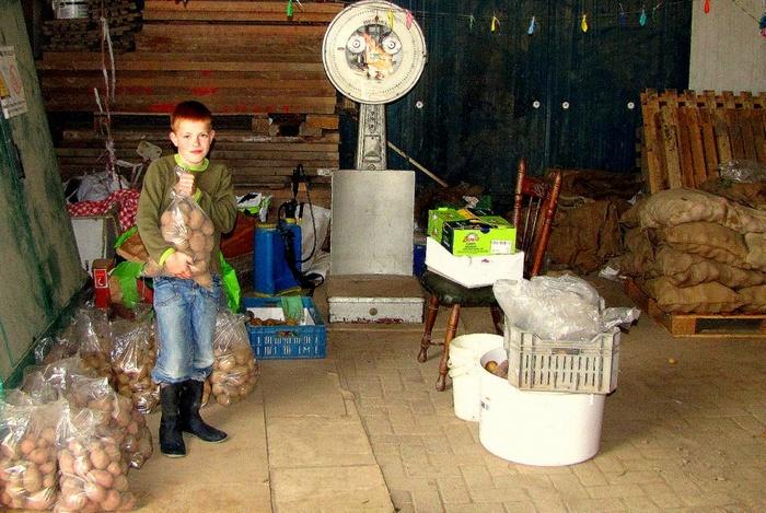 piershil-buitenom-zevenbergen-okt2011-01