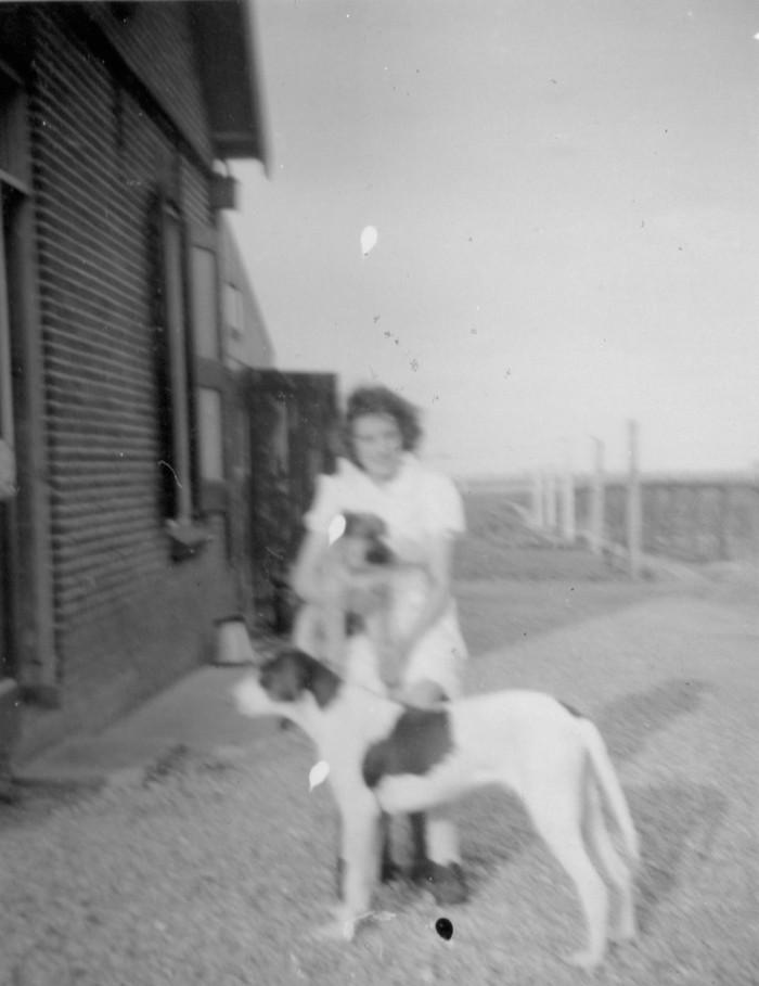 piershil-heullaan5-achtertuin-hond