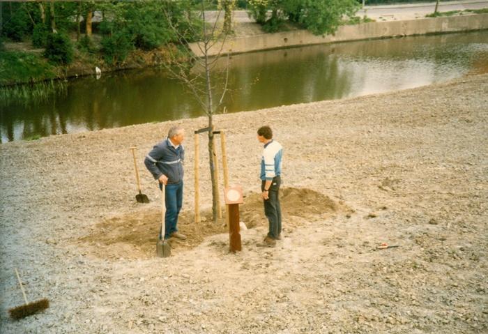 piershil-koningin-beatrix-boom-aanplant-30april1988-01