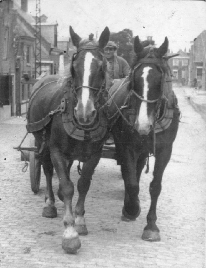 piershil-paarden-voorstraat-pleunrozendaal-1937