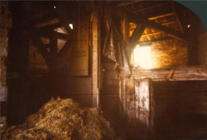 piershil-sloop-boerderijadenklaas-10