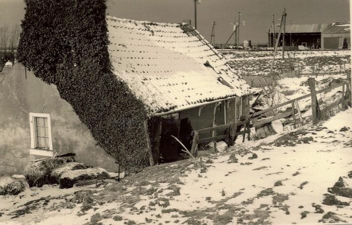piershil-sluisjesdijk-hoekwestzijde-1953