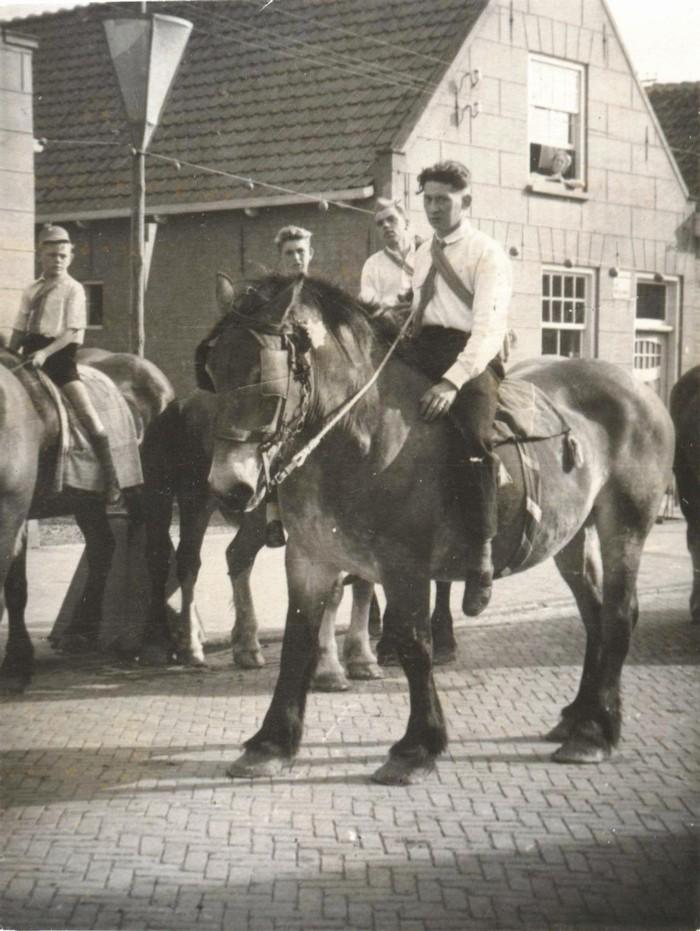 piershil-voorstraat-paarden
