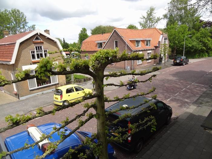 piershil-voorstraat24-uitzicht-23mei2013-04