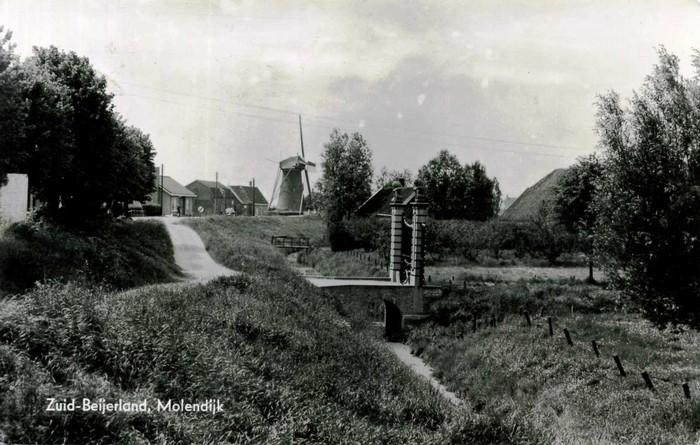 zuid-beijerland-molendijk-03