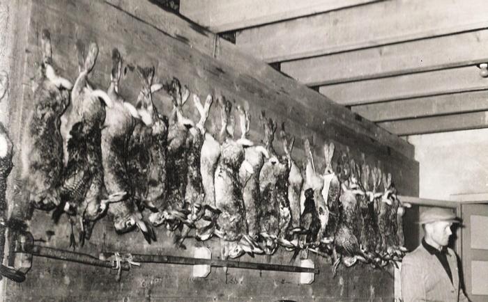 piershil-jacht-oosthoek-1956-03