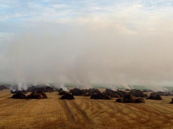 piershil-kostverlorendijk-hooibrand-juli2014-03