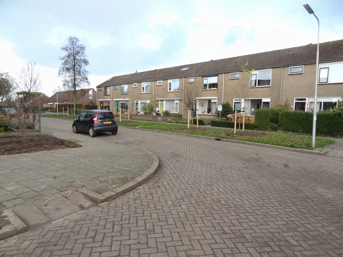 piershil-mauritsstraat-bomengekapt-nov2012-05