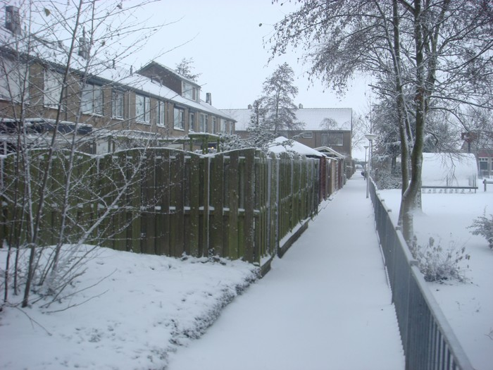 piershil-mauritsstraat-sneeuw-20dec2009-01