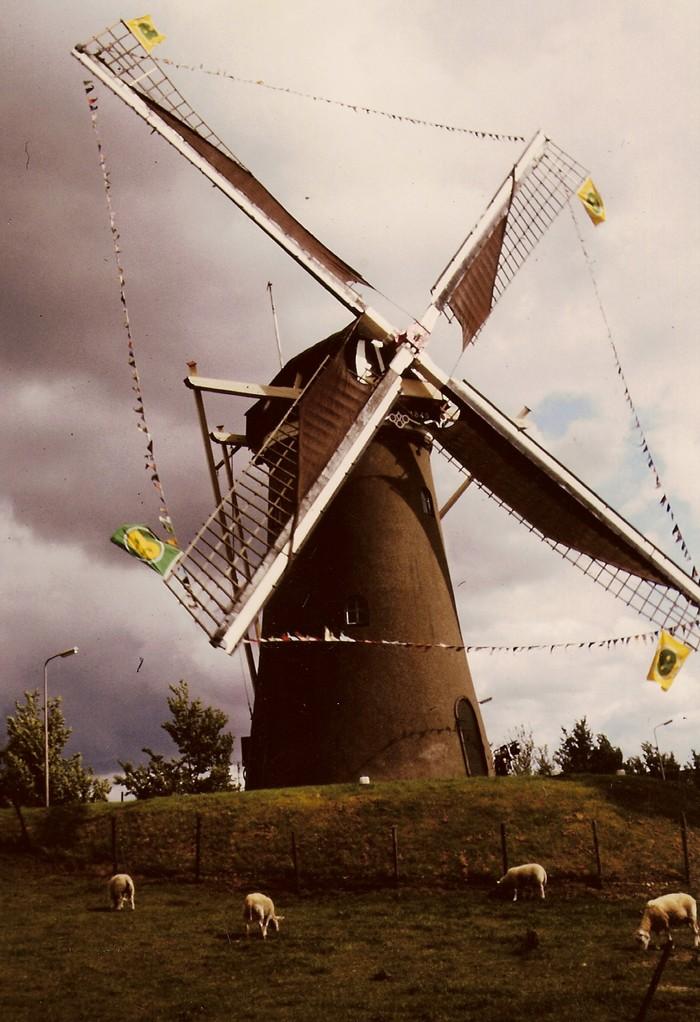 piershil-molen-molendagen-juli1986