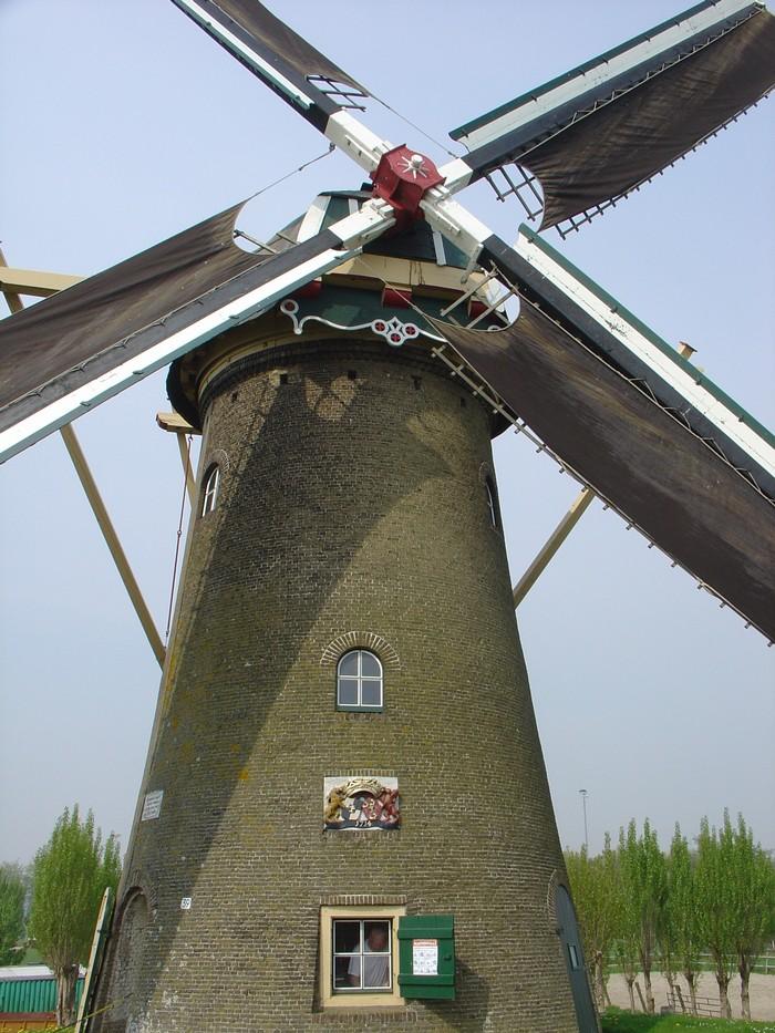 piershil-molen-simonia-zeilen-6mei2006-04
