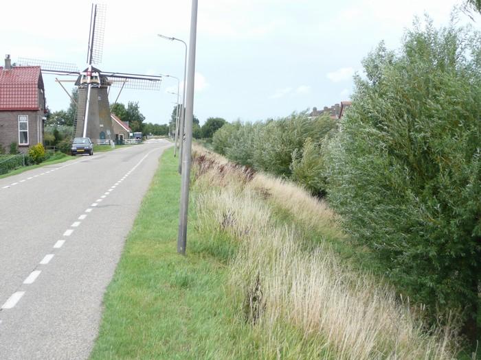piershil-molendijk-17juli2011