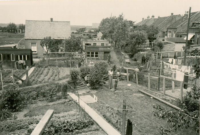 piershil-molendijk-boogerdpad-02