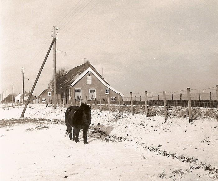 piershil-oosthoek-blackie-berkhout-1968