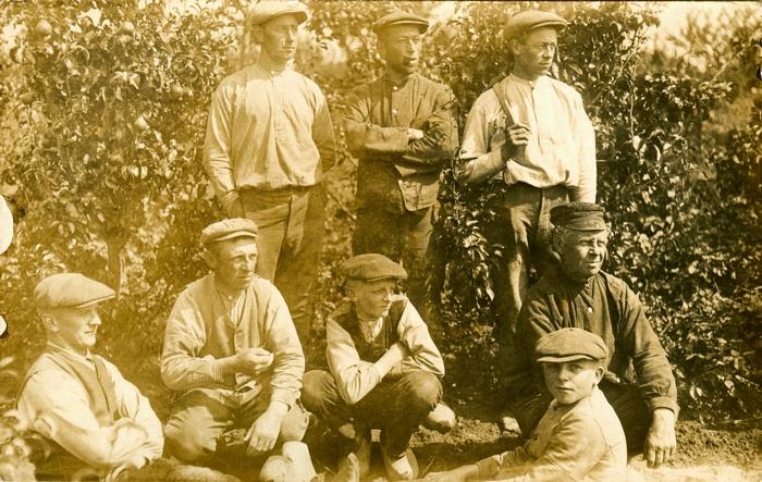 piershil-oudpiershilseweg-boomgaard-1915